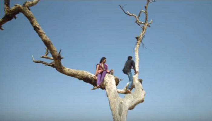 सैराटमधील 'त्या' झाडाची सोशल मीडियावर पुन्हा चर्चा