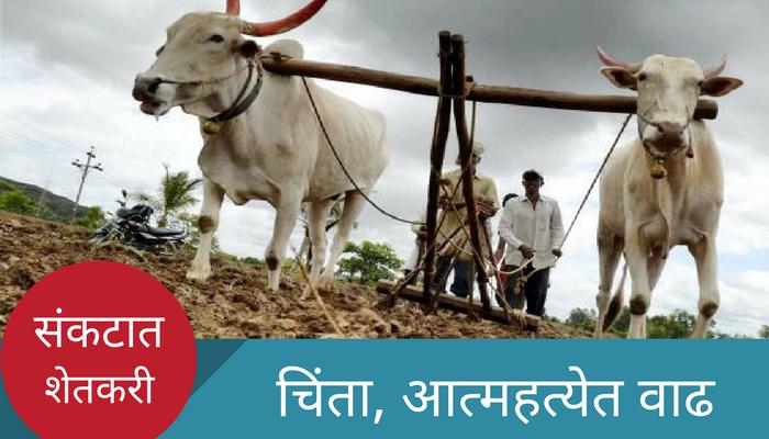 धक्कादायक, मराठवाड्यात 117 शेतकऱ्यांच्या आत्महत्या