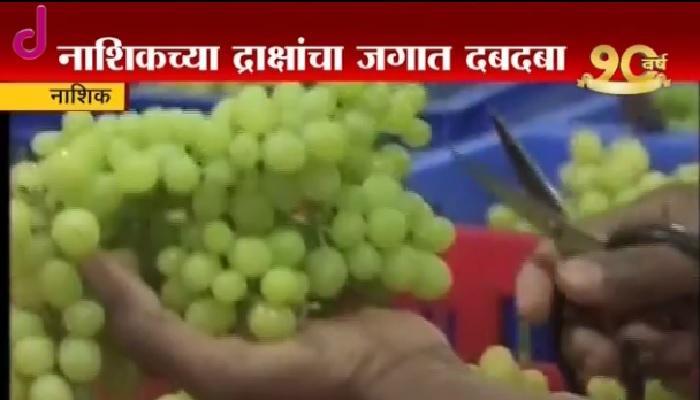 नाशिक द्राक्षांच्या चीन, रशियाला भूरळ