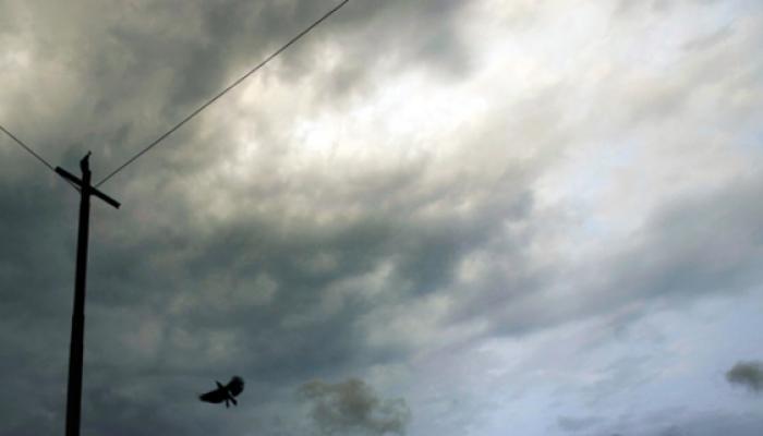 मुंबईसह राज्यात ढगाळ वातावरण, पावसाची शक्यता