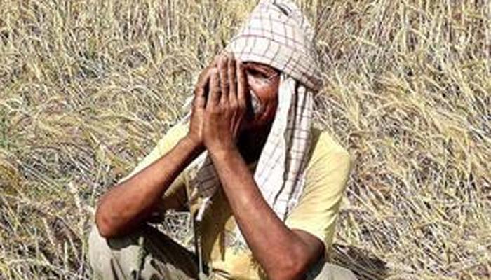 कॅशलेसमुळे व्यापारी करताहेत शेतकऱ्यांची फसवणूक