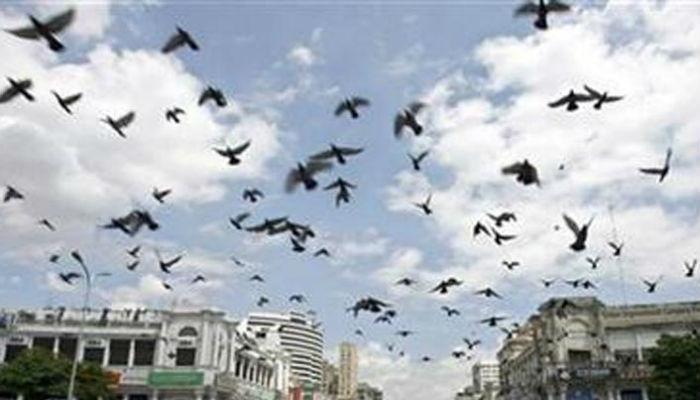 राजधानी दिल्ली, हिस्सारला पुन्हा एकदा भूकंपाचा धक्का