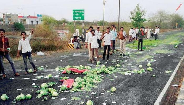 शेतकरी संतापला, ५ जूनला महाराष्ट्र बंदची हाक