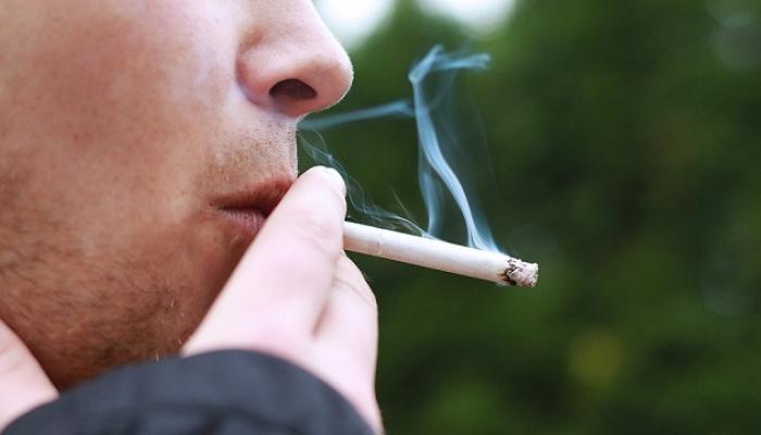 धूम्रपानाची सवय सोडायची आहे...तर हे पदार्थ दररोज खा