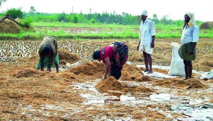 पाऊस दाखल, मात्र शेतकऱ्यांचा 'तेरावा' महिना सुरूच!