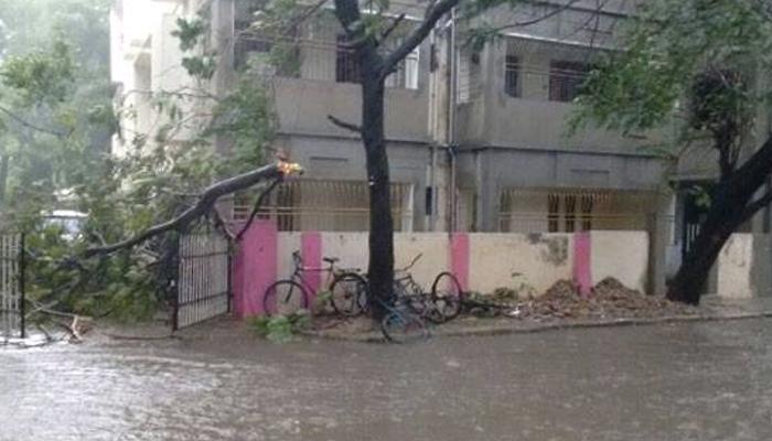औरंगाबादेत वादळी पाऊस, डाळिंब - मोसंबीच्या बागा उद्ध्वस्त