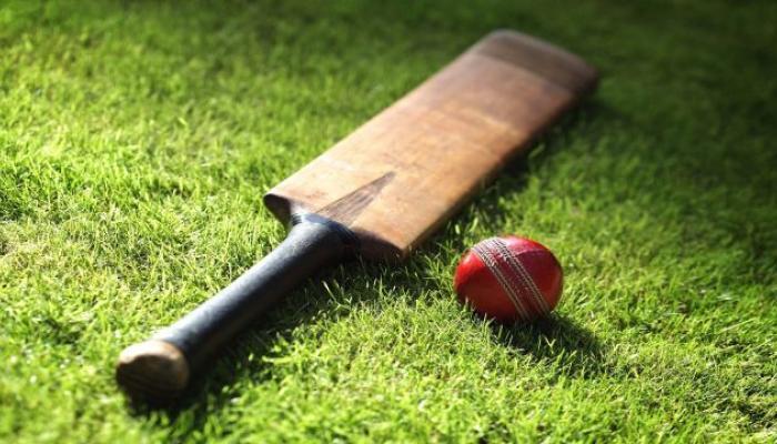 आयर्लंड आणि अफगाणिस्तानला मिळाला टेस्ट क्रिकेटचा दर्जा