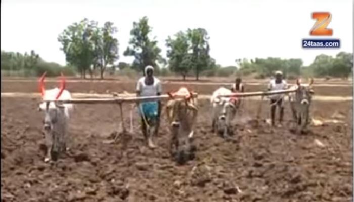 पावसाने दडी मारल्याने शेतकऱ्यांवर दुबार पेरणीचं मोठं संकट