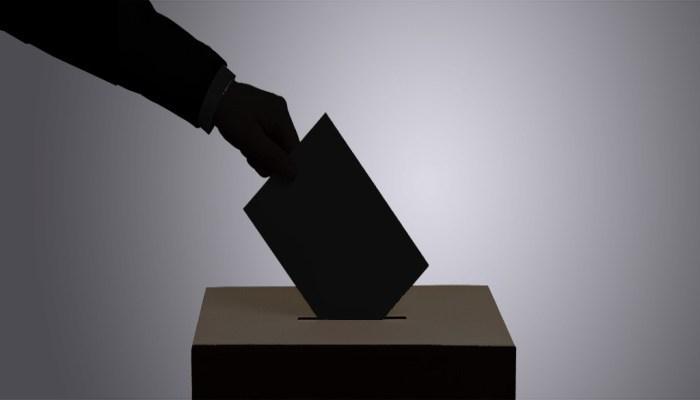 या देशाने दिला महिलांना सर्वप्रथम मतदानाचा अधिकार