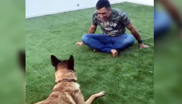 VIDEO : धोनीची कुत्र्यासोबत मस्ती!