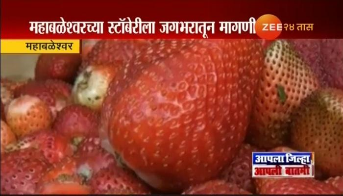 महाबळेश्वरमधील स्ट्रॉबेरीला जगभरातून मागणी