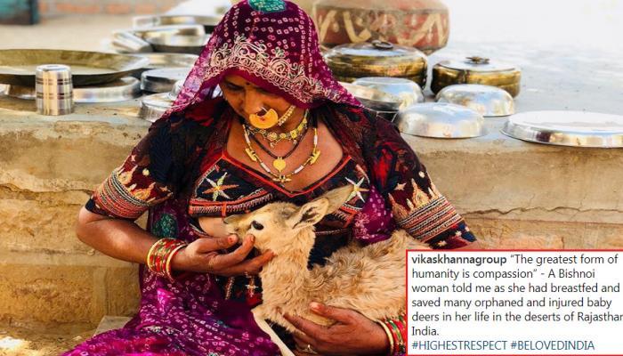 जनावरांना आईप्रमाणे दूध पाजणारी महिला, Photo Viral
