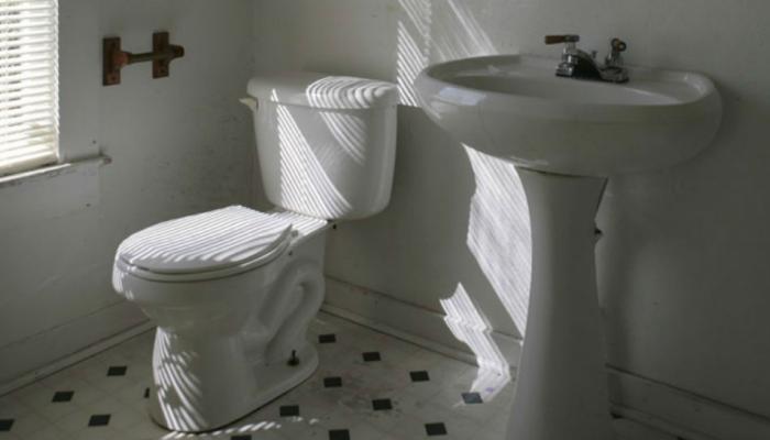 VIDEO: शौचालयाला जाण्यापूर्वी सीट जरुर चेक करा अन्यथा...