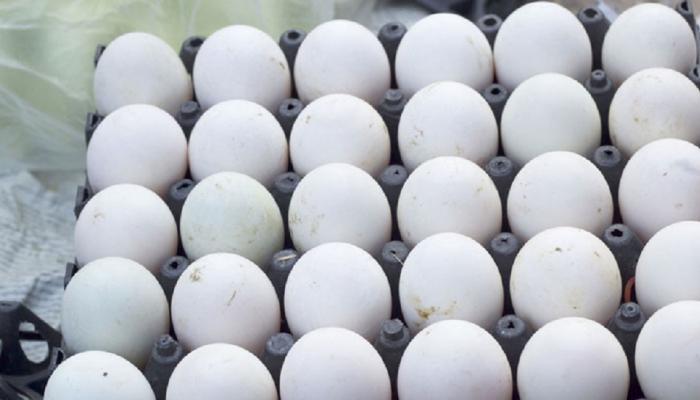 थंडीमध्ये अंडी खाताय ? मग आधी हे वाचा