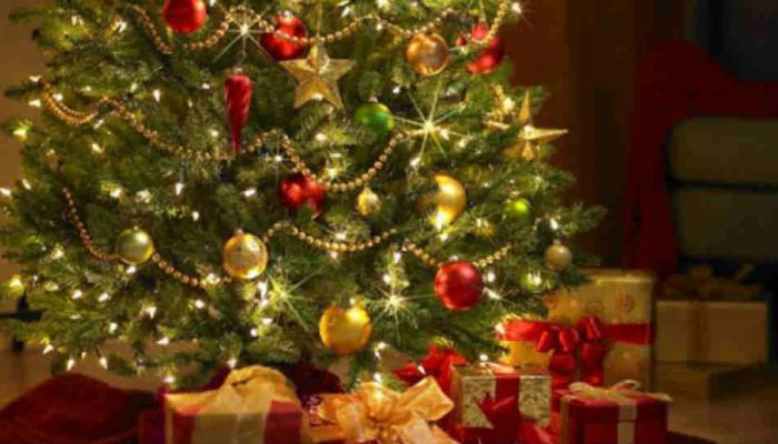 ख्रिसमस ट्रीबाबत अशा खास गोष्टी ज्या तुम्हाला माहिती नसतील!
