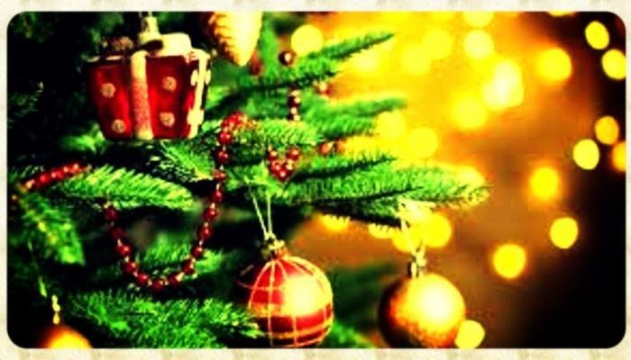 ख्रिसमस 2017: का सजवला जातो 'ख्रिसमस ट्री' ?