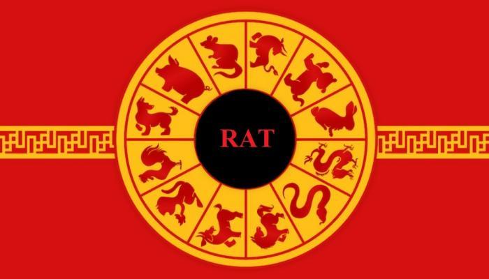 जाणून घ्या, Chinese Horoscope नुसार कसे असेल २०१८ हे वर्ष