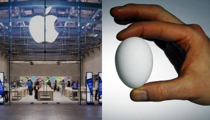 अंड्याशी संबंधित या प्रश्नाच्या उत्तरानंतर अॅपलमध्ये मिळणार ७६ लाखांची नोकरी