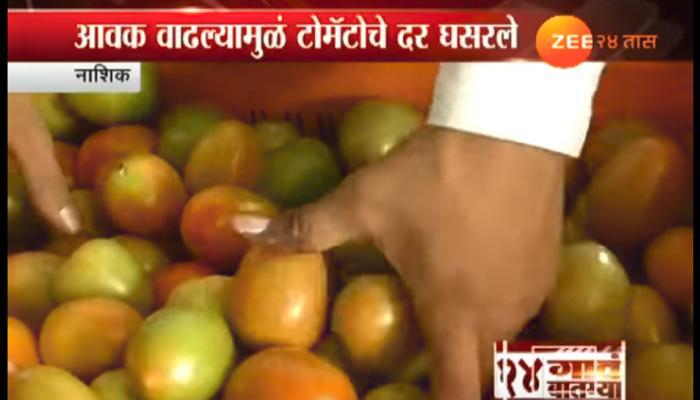 टोमॅटोचे दर घसरल्यामुळं शेतकऱ्यांनी दिले फेकून