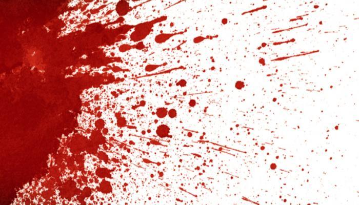 व्हिडिओ गेमवरून भांडण; भावाने गोळ्या झाडून केली बहिणीची हत्या