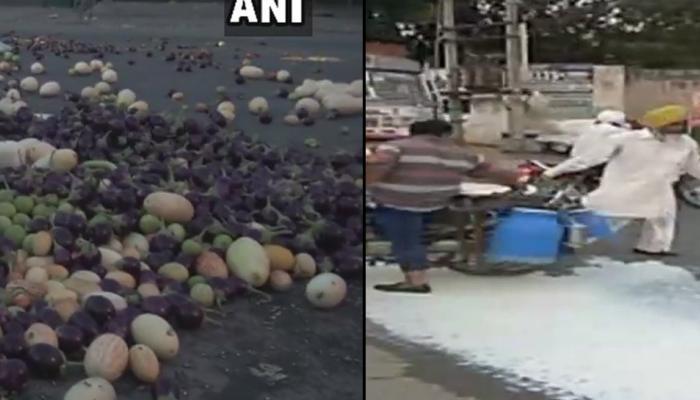 शेतकरी आंदोलन : मध्य प्रदेशात 'गाव बंद'चा मोठा परिणाम, १० जूनला भारत बंद