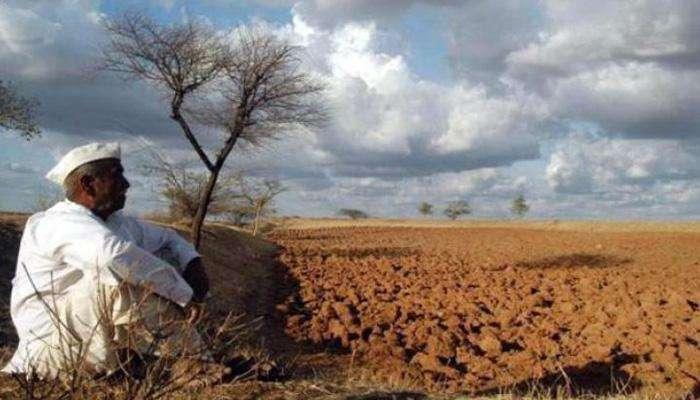 मराठवाड्यात पावसाची दडी; शेतकरी चिंतेत