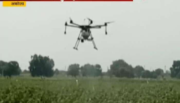 Akola Spray On Crops By Drone